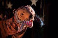Le tigre, dans <em>The Paper Dolls</em> (2015) par le Little Angel Theatre (Londres, Royaume-Uni), mise en scène : Peter Glanville, conception et fabrication: Lyndie Wright. Marionnette à tiges, hauteur : 30 cm. Photo: Ellie Kurttz