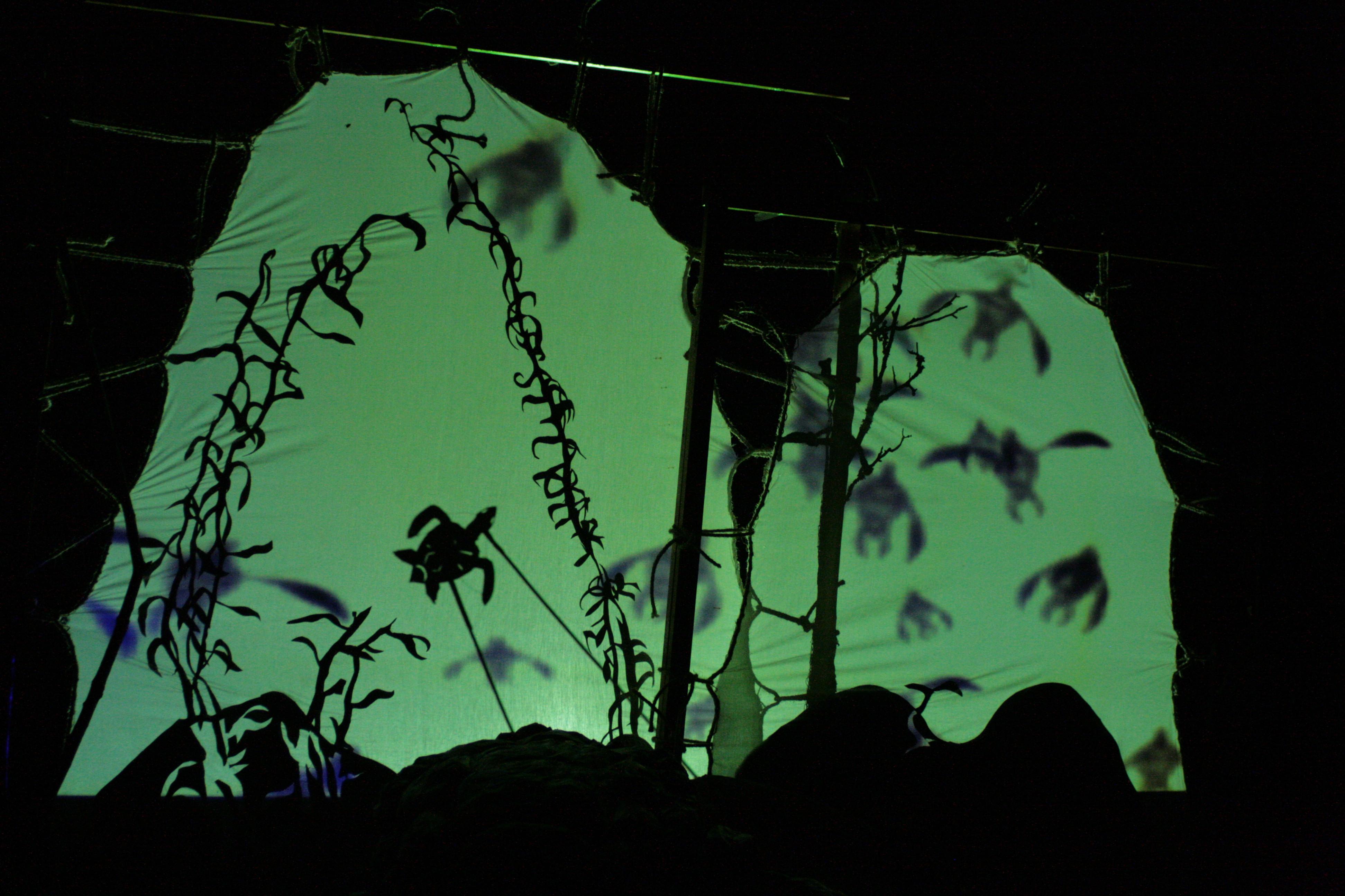 <em>Turning Turtles</em> par Beyond the Bark Puppet and Installation Theatre (Limerick, Irlande), histoire, mise en scène et marionnettes : Daragh Bradshaw, Emma Fisher, Mags O'Donoghue, scénario : Duncan Molloy, scénographie : Daragh Bradshaw, Emma Fisher, design d'éclairage : Kev O'Malley, design sonore : Ger O'Donnell. Théâtre d'ombres